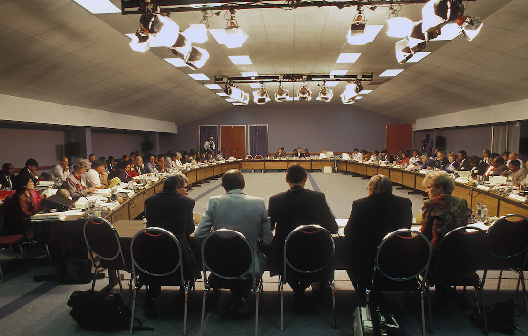 A meeting of the MPNP 1993.